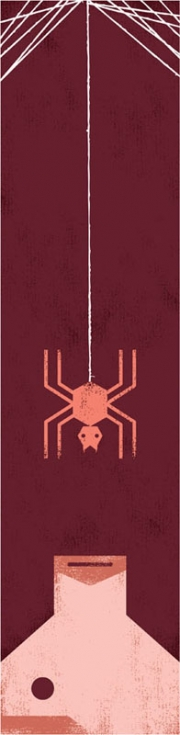 Matthew-Daley-IllustrationFriday_1118_Spider
