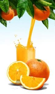 Rick-Jacobson-Orange-Juice-with-Slices-and-Pour