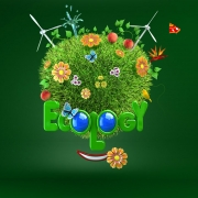 Matt-Roussel-Ecology