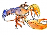 Shelagh-Armstrong-LobsterPaint1