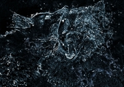 Rick-Jacobson-Water-Wolves