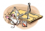 Dave-Whamond-Mousetrap-3