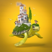 Matt-Roussel-3Dl-Turtle